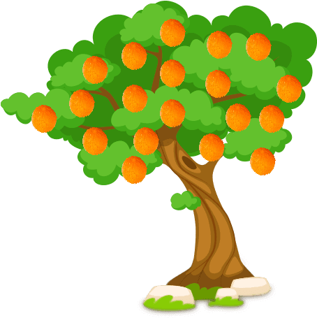 Download An Orange Tree Can Grow To Reach 30 Feet And Live For ... image royalty free stock