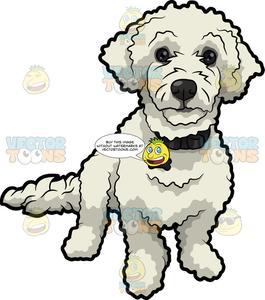 Cartoon poodle clipart graphic transparent library A Cute White Poodle graphic transparent library