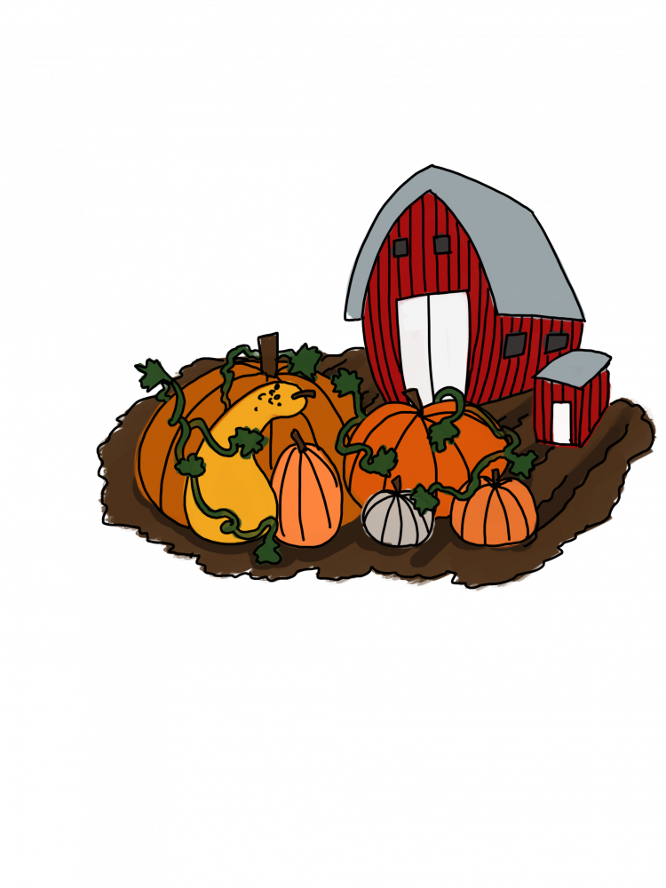 Pumpkin patch clipart png clip art freeuse download 4 pumpkin patches to visit near Athens this October | The Post clip art freeuse download