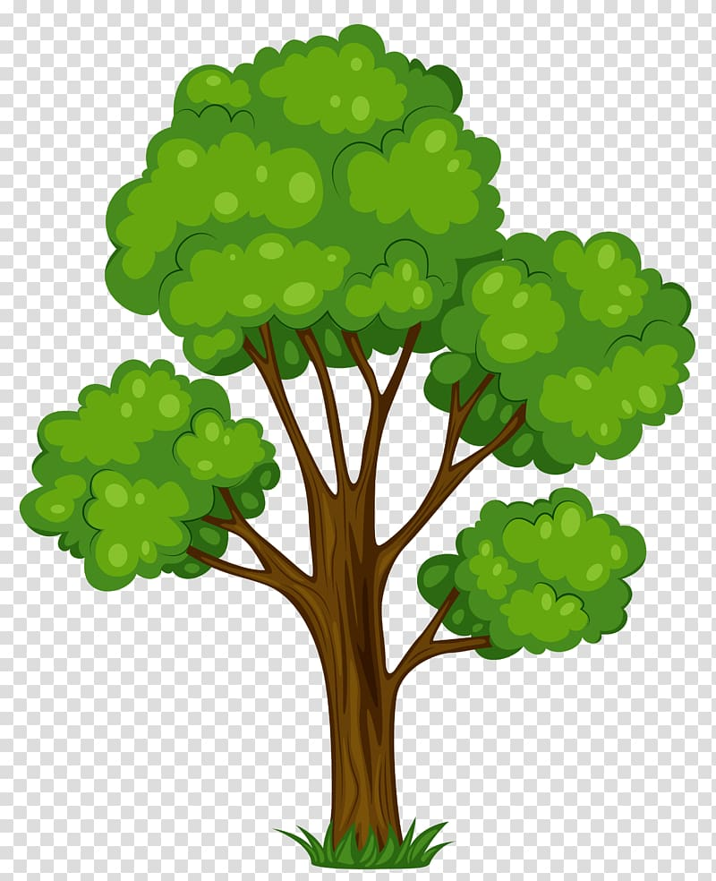 Cartoon tree pictures clipart picture free download Tree Cartoon , Tree transparent background PNG clipart | HiClipart picture free download