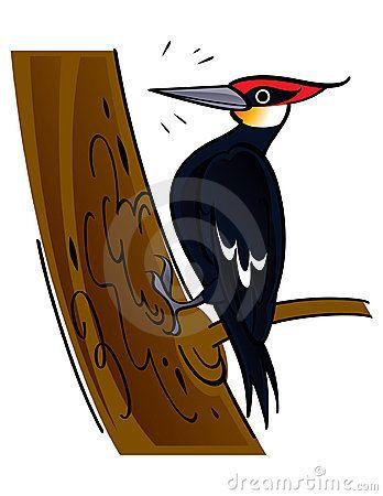 Cartoon woodpecker clipart vector freeuse library IPA animal: upsilon in \