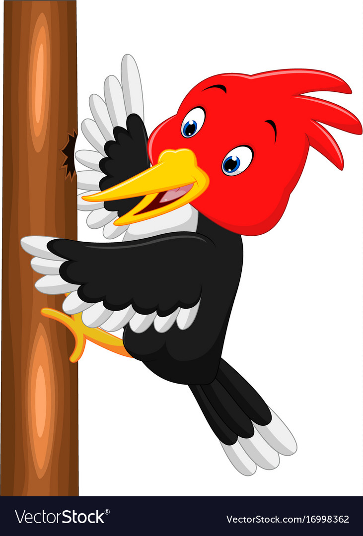 Cartoon woodpecker clipart clip library library Woodpecker bird cartoon vector image clip library library