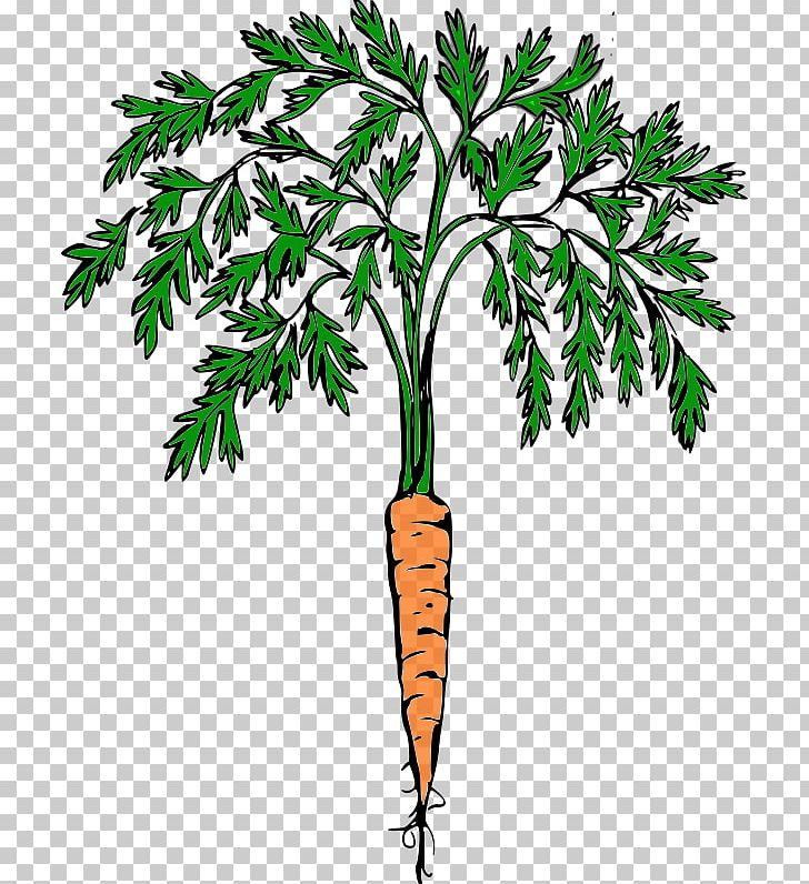 Cash crops clipart banner library download Carrot Cash Crop Food PNG, Clipart, Branch, Carrot, Cash Crop, Crop ... banner library download