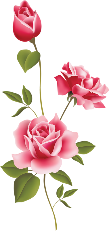 Free Roses Art, Download Free Clip Art, Free Clip Art on Clipart Library clip library library