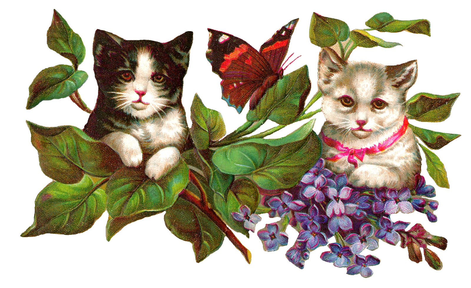 Cat and butterfly clipart banner freeuse library Antique Images: Vintage Cat Image Wisteria Flowers Butterfly Clip Art banner freeuse library