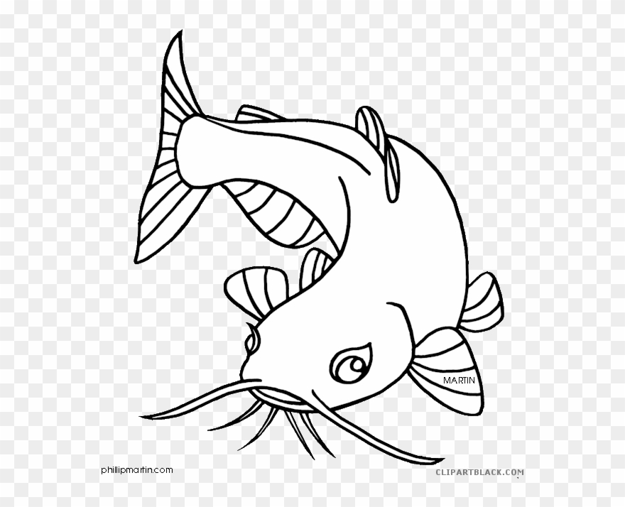 Cat and fish clipart black and white image black and white library Clipart Library Catfish Clipart Black And White - Drawing Of A ... image black and white library