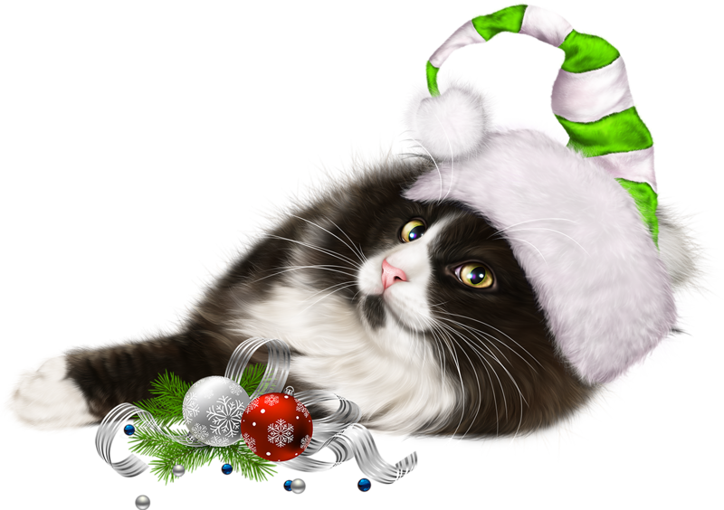 Christmas clipart cat clip art free stock Pin by ~Girly❤️Girl~ on Cat 3D Tubes 2 | Pinterest clip art free stock
