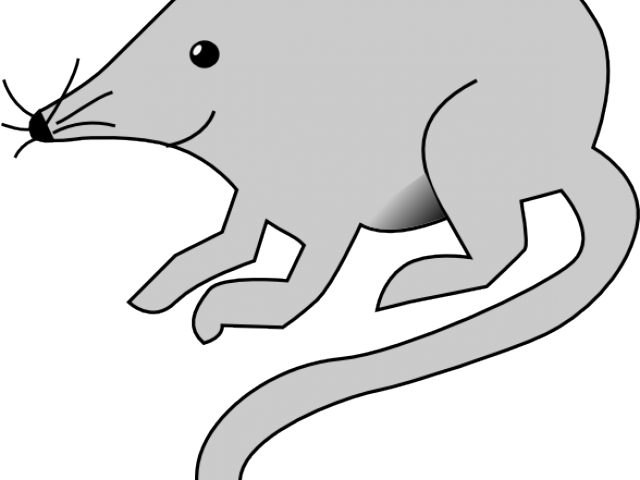 Cat and rat clipart library Rat Mouse Clipart - Free Clipart on Dumielauxepices.net library