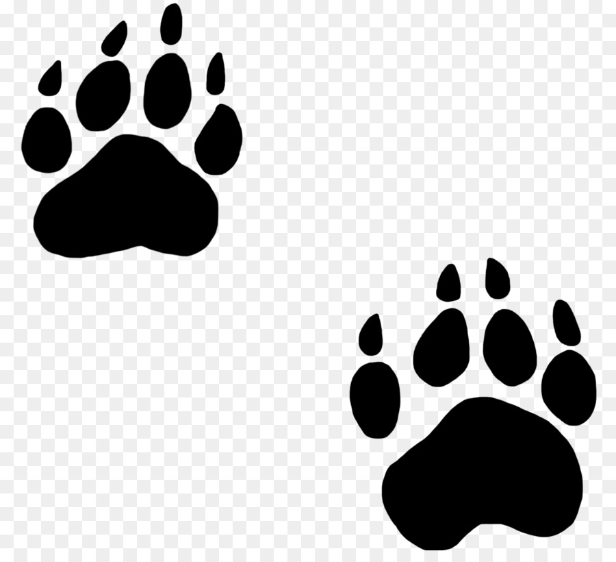 Cat bear clipart black and white Polar Bear Cartoon png download - 1654*1476 - Free Transparent Bear ... black and white