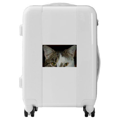 Look at me: White and grey-tigered Cat Luggage | Zazzle.com in 2019 ... picture royalty free
