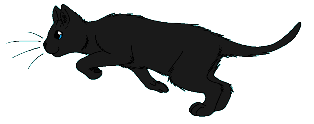 Cat pouncing clipart clip art black and white Ravenwing | Warrior Cat Wiki | FANDOM powered by Wikia clip art black and white