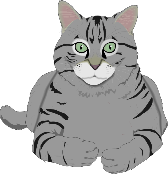 Gray cat clipart