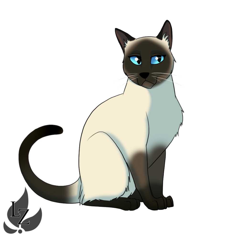 Cat clipart free transparent background realistic siamese jpg library library 28+ Collection of Siamese Cat Cartoon Drawing | High quality, free ... jpg library library