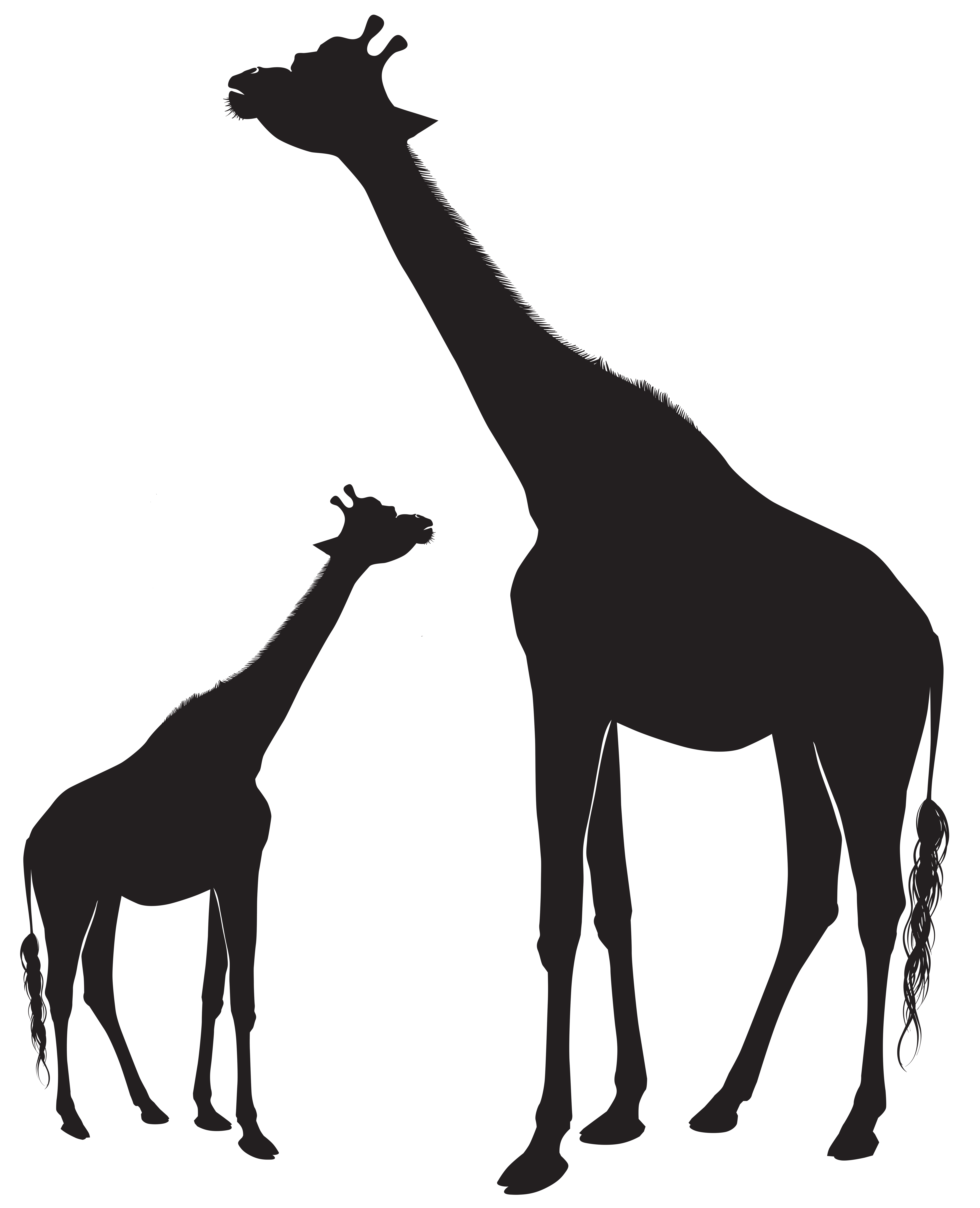 Cat clipart giraffe graphic royalty free library Giraffe Silhouette Clip Art at GetDrawings.com | Free for personal ... graphic royalty free library