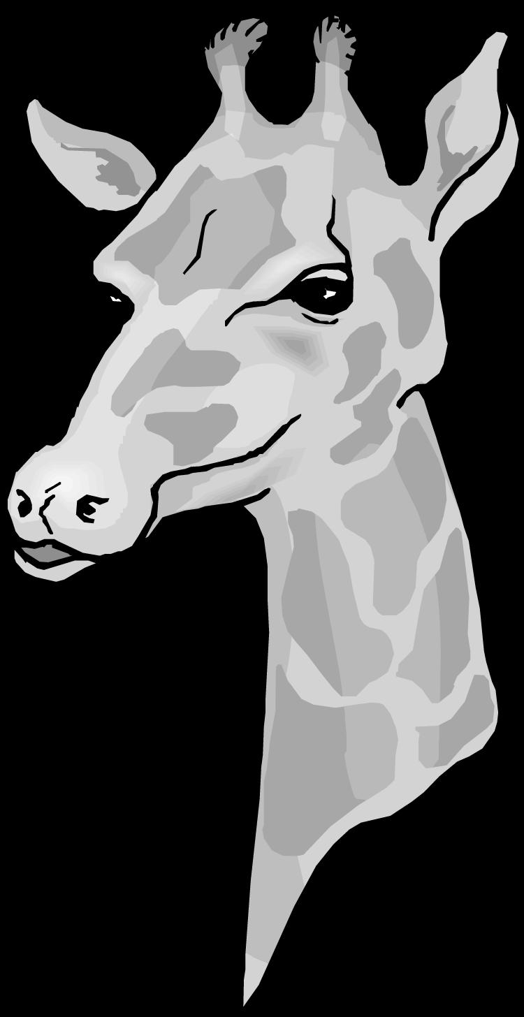 Cat clipart giraffe clip black and white stock Giraffe Head Clipart - ClipartBlack.com clip black and white stock