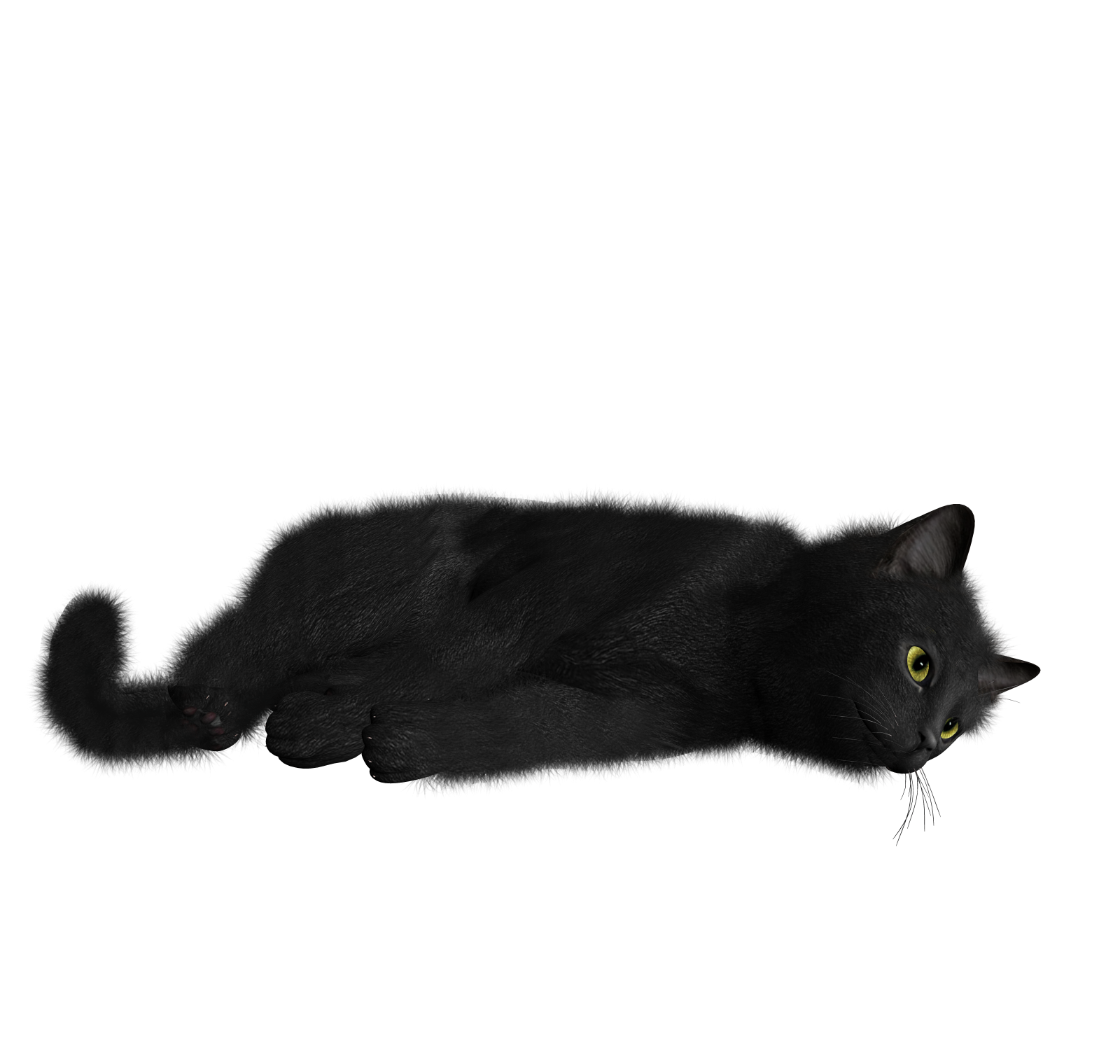 Feral cat clipart image royalty free Cat / Image ID: 432 | PNG Photo with Transparent Background image royalty free