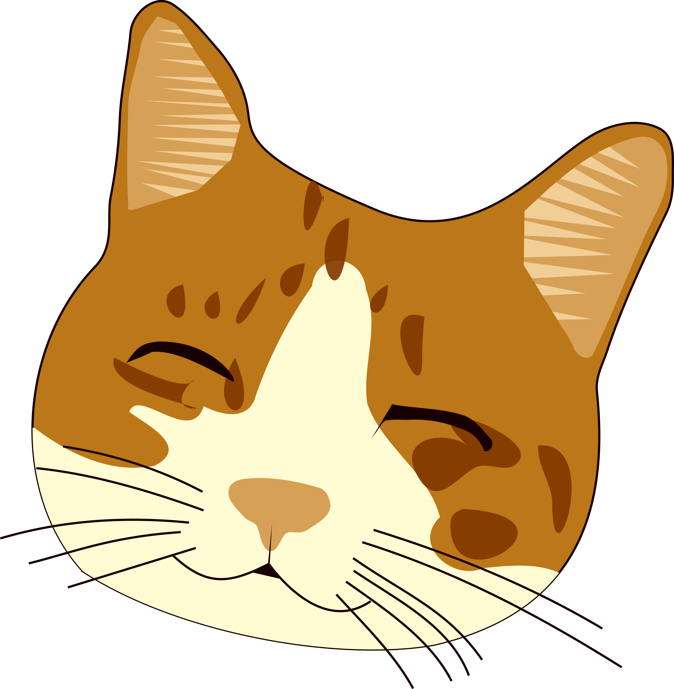 Cat eyes and whiskers clipart svg library Cat / Image ID: 426 | PNG Photo with Transparent Background svg library