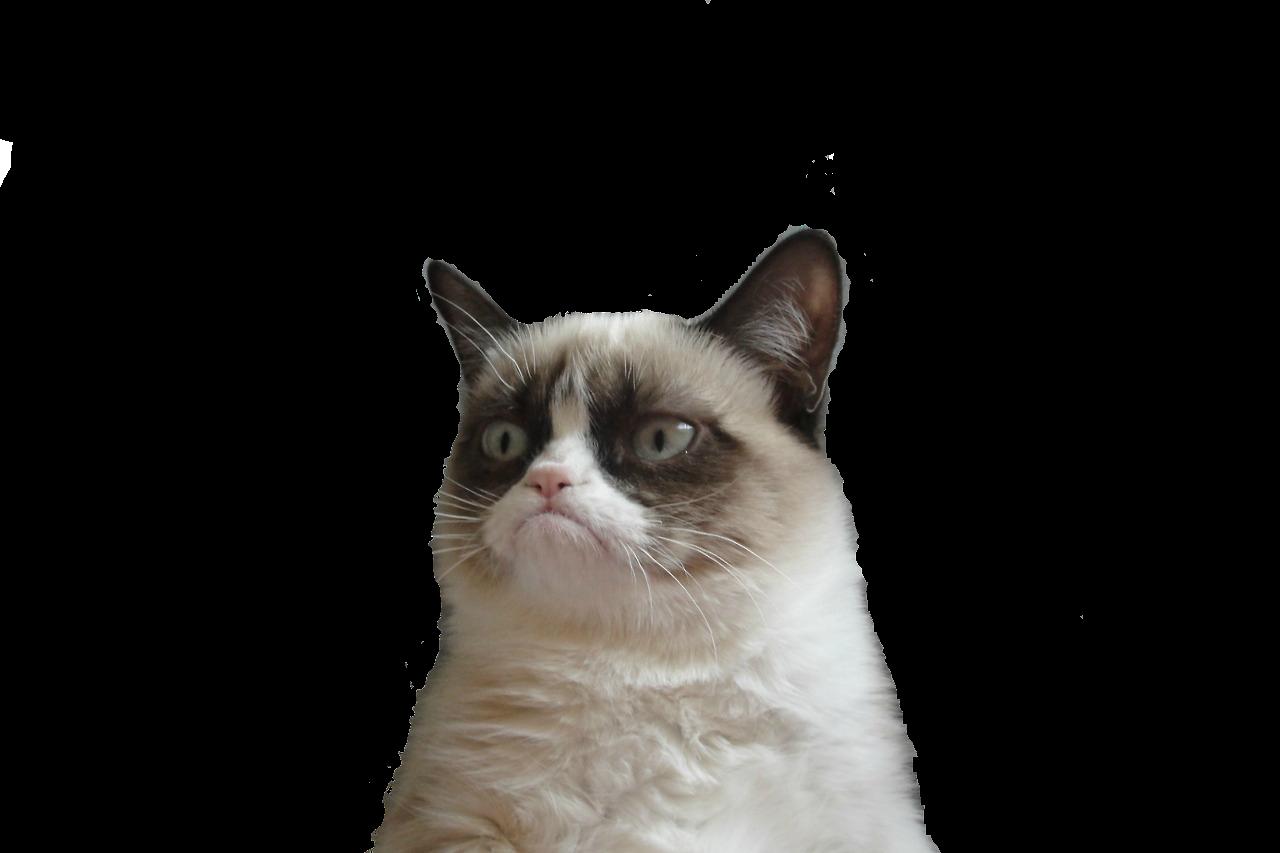 Cat face clipart transparent graphic free library Grumpy Cat Snowshoe cat Manx cat Clip art - cat face 1280*853 ... graphic free library
