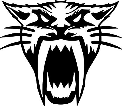 Arctic Cat Fangs Mean Cat Head Snowmobile Decal Sticker (10 INCH, Black) jpg stock