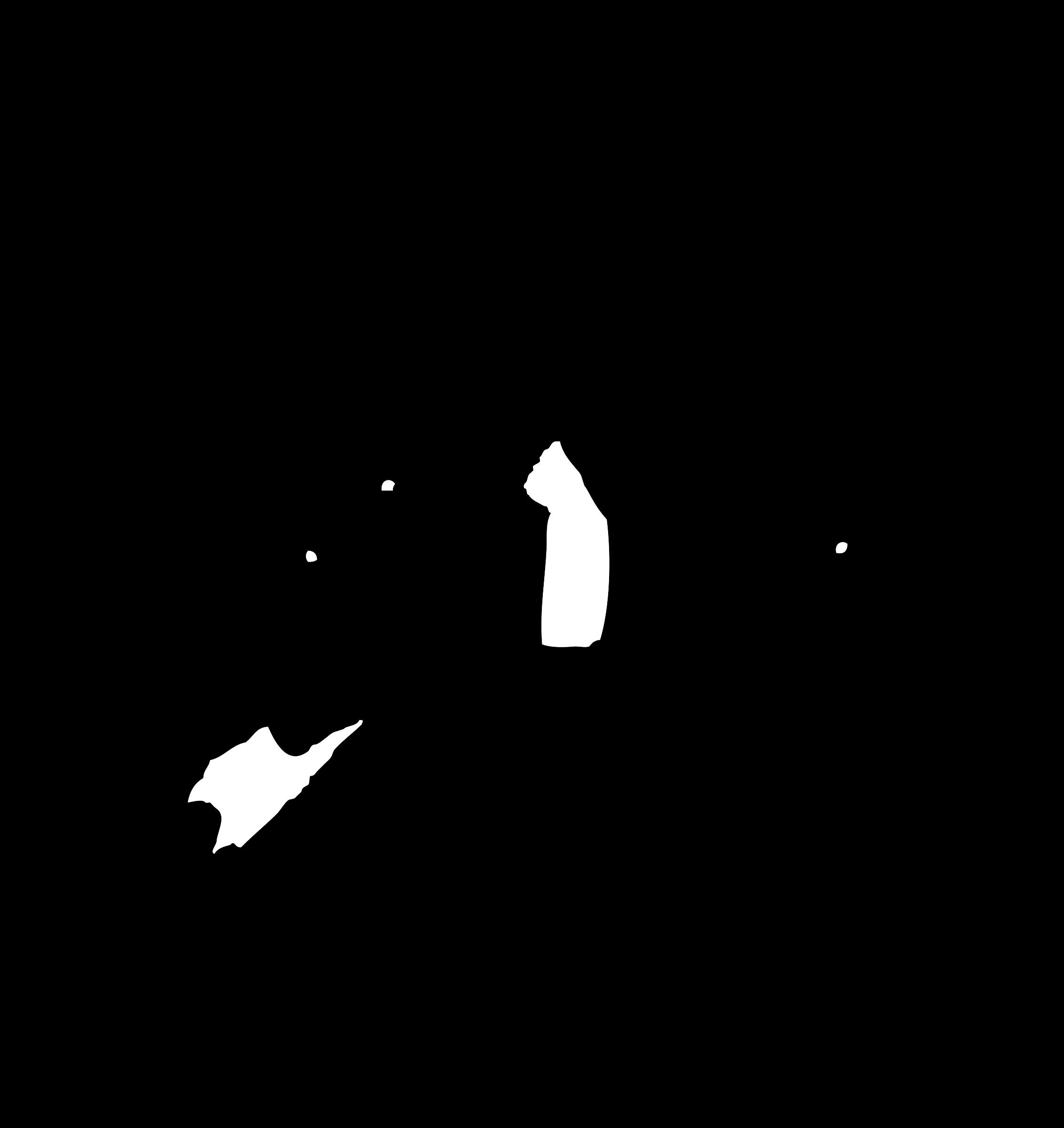 Cat fight clipart image transparent Clipart - cat fight silhouette image transparent