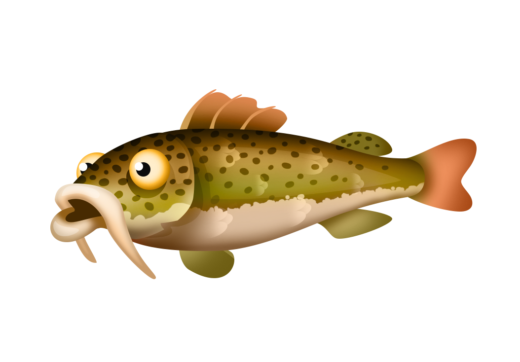 Lake fish clipart picture free Fish | Hay Day Wiki | FANDOM powered by Wikia picture free