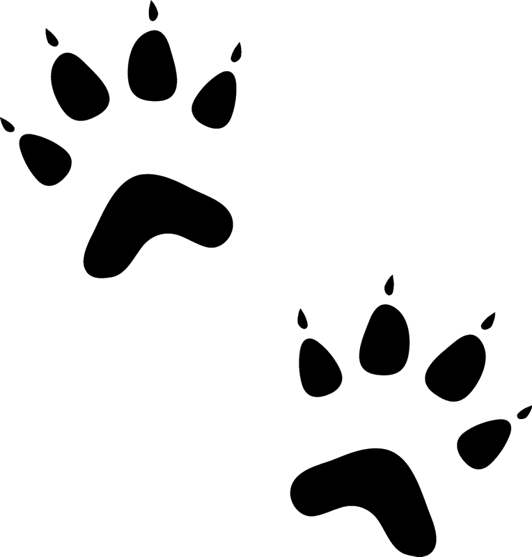 Cat footprints clipart clip black and white library Cat Paw Prints Images (42+) Desktop Backgrounds clip black and white library