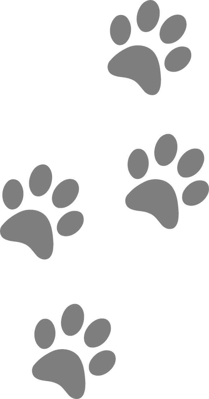 Cat footprints clipart clipart freeuse download Free Image on Pixabay - Footprints, Animal, Dog, Paw, Cat ... clipart freeuse download