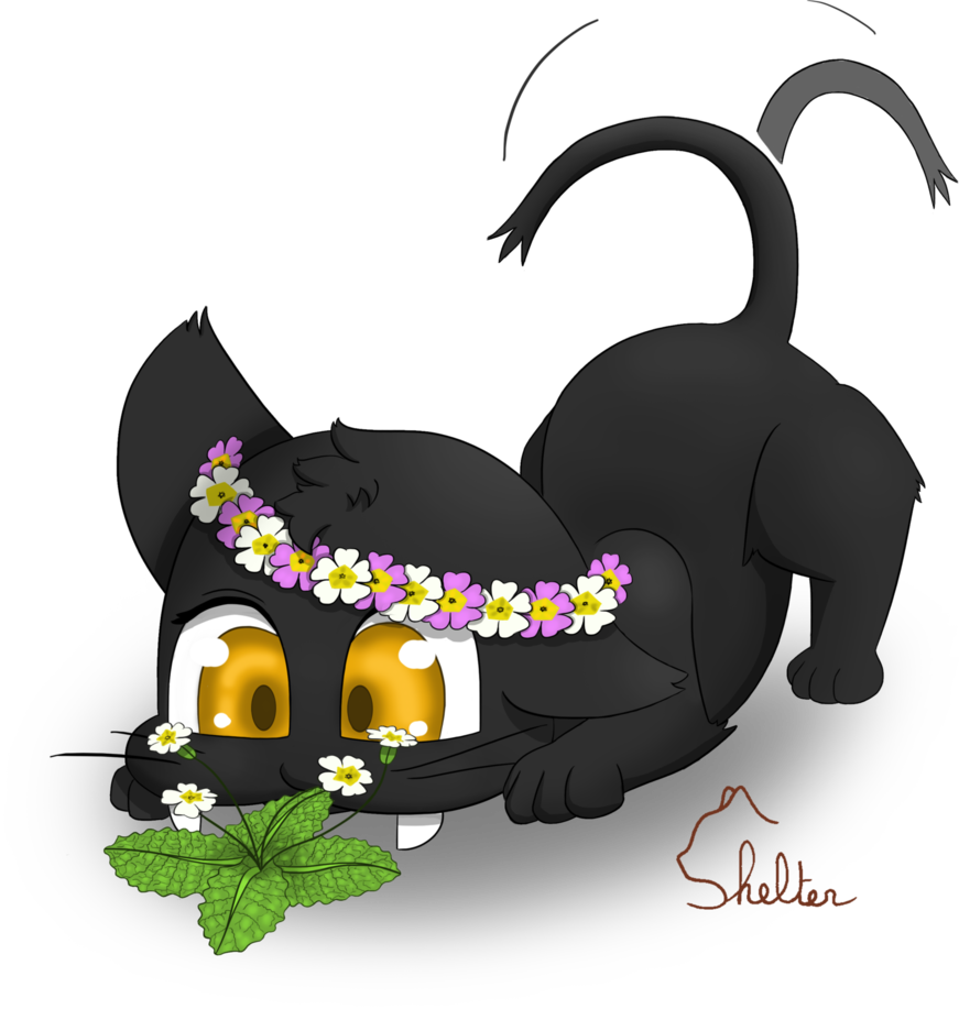 Cat hat type people clipart png transparent library Primulas by Shelter-Cat on DeviantArt png transparent library