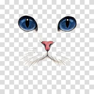 Cat illustrations clipart royalty free stock Cat Dog Kitten Illustration, Cartoon cute cat , kitten collection ... royalty free stock