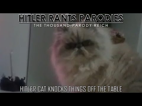 Hitler cat knocks things off the table | Hitler\'s "|480|360|?|b101a79890615f232a906950418c5d4e|False|UNLIKELY|0.3764421343803406