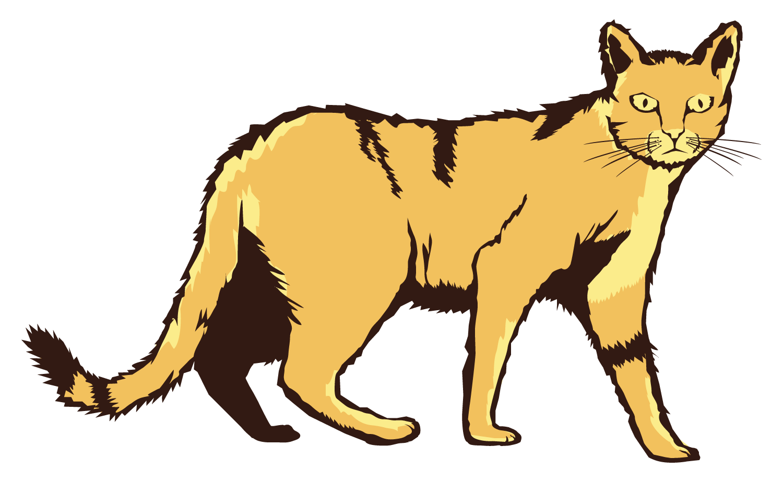 Clipground feralcatscan home. Feral cat clipart