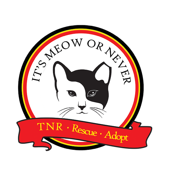 Cat water bowl clipart png free library Barn Cats | United States | Its Meow or Never Tally png free library
