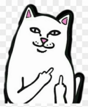 Cat middle finger clipart clip freeuse stock Middle Finger Meme Png - Middle Finger Cat Meme - Free Transparent ... clip freeuse stock