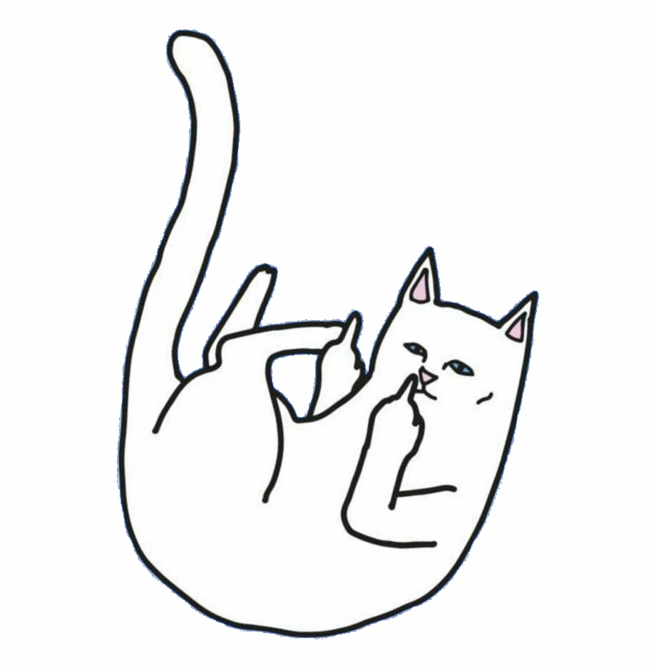 Cat middle finger clipart vector Middle Finger Cat Free PNG Images & Clipart Download #2419551 ... vector