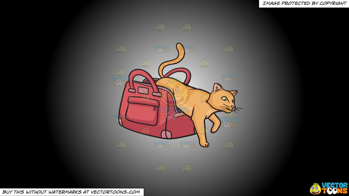 Cat out of the bag clipart svg free download Clipart: Let The Cat Out Of The Bag on a White And Black Gradient Background svg free download