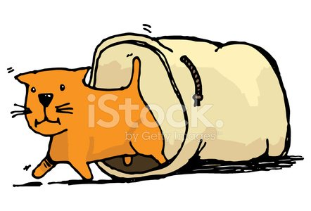Cat out of the bag clipart