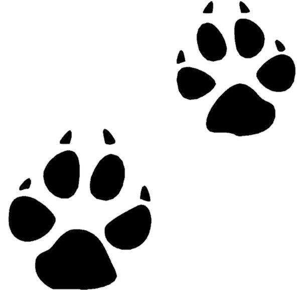 Cat prints clipart black and white download 18new Cat Paw Print Clip Art - Clip arts & coloring pages black and white download