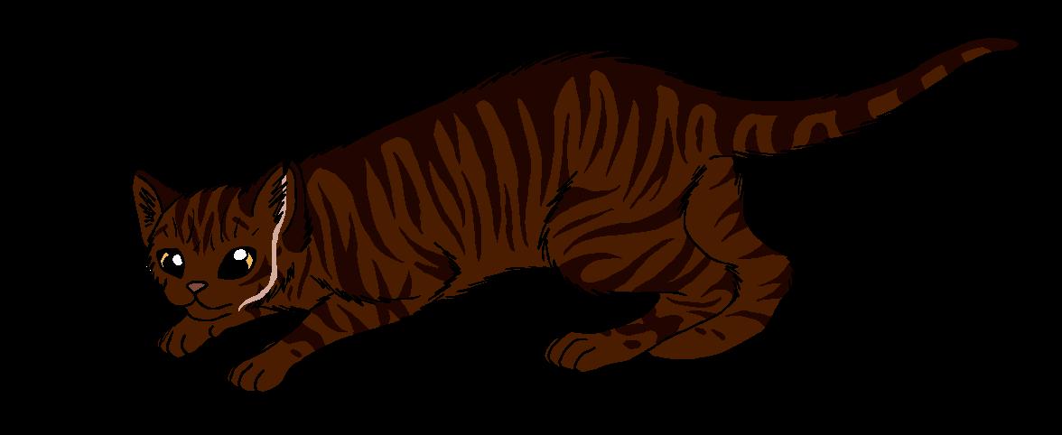 Cat peeks over edge clipart jpg free Redscar | Warrior Cat Wiki | FANDOM powered by Wikia jpg free