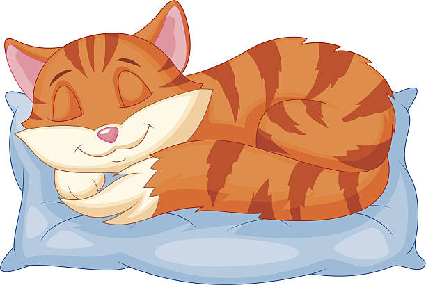 Tail Clipart Cat Sleeping Pencil And In Color Tail, Baby Pillow Set ... svg library