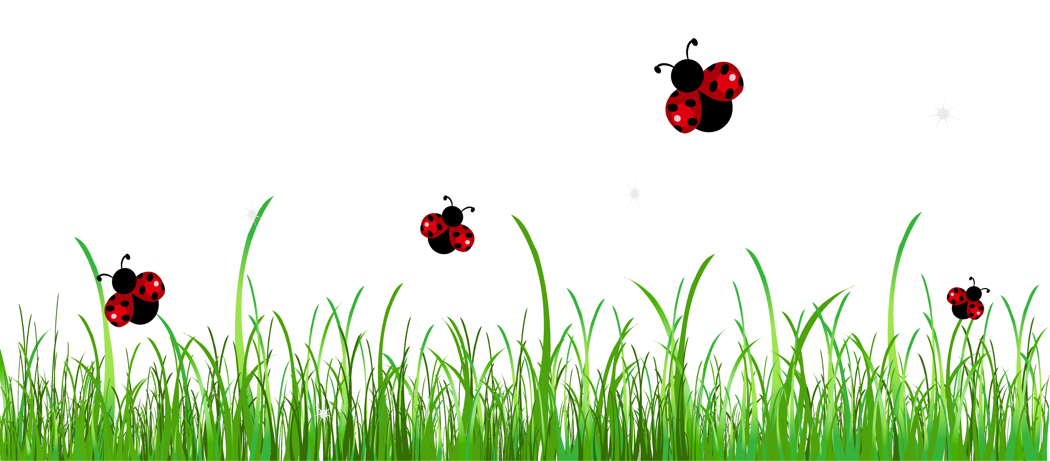 Ladybug on a flower clipart free graphic transparent Ladybug Clipart 5 HD Images | All Creatures | Pinterest | Ladybird ... graphic transparent