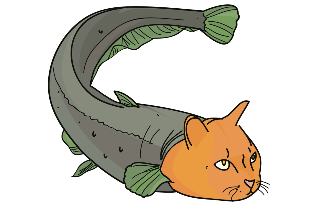 Cat with fish clipart clip Catfish Clip art - Catfish 1024*668 transprent Png Free Download ... clip