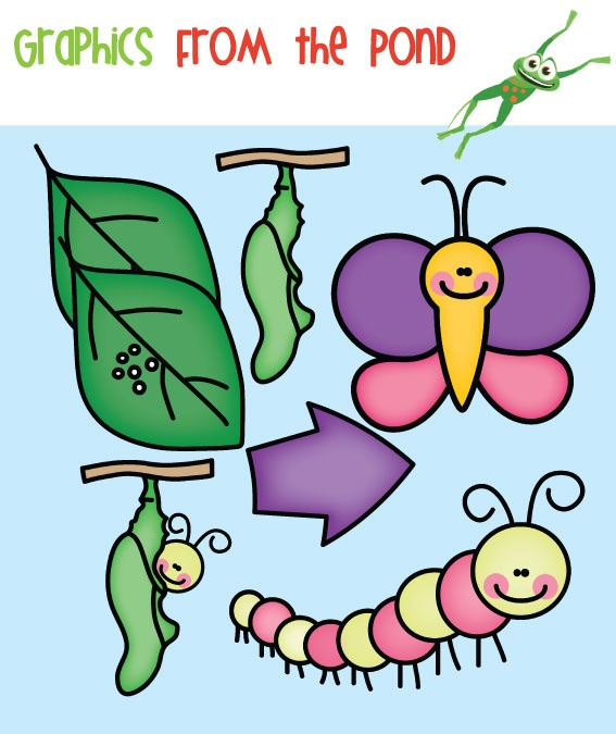 Catapillar of a butterfly clipart jpg library Free Caterpillar Food Cliparts, Download Free Clip Art, Free Clip ... jpg library