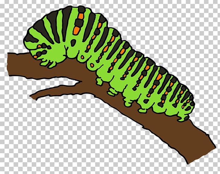 Catapillar of a butterfly clipart svg transparent download Caterpillar Butterfly Worm PNG, Clipart, Animaatio, Animals ... svg transparent download