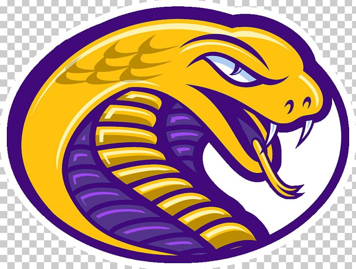 Catawba college football clipart vector freeuse Coker College Coker Cobras Women\'s Basketball Coker Cobras Men\'s ... vector freeuse