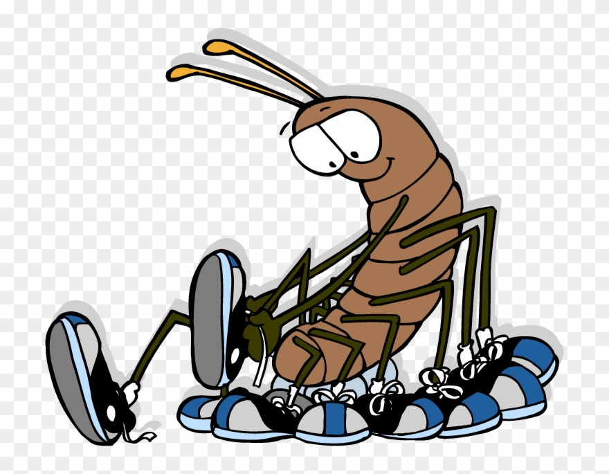 Caterpillar with shoes clipart clip royalty free Centipede - - Cartoon Centipede Wearing Shoes Clipart (#488149 ... clip royalty free