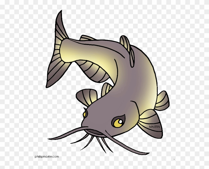 Catfish logo clipart svg free download Channel Catfish Clip Art - Cartoon Picture Of Catfish - Png Download ... svg free download