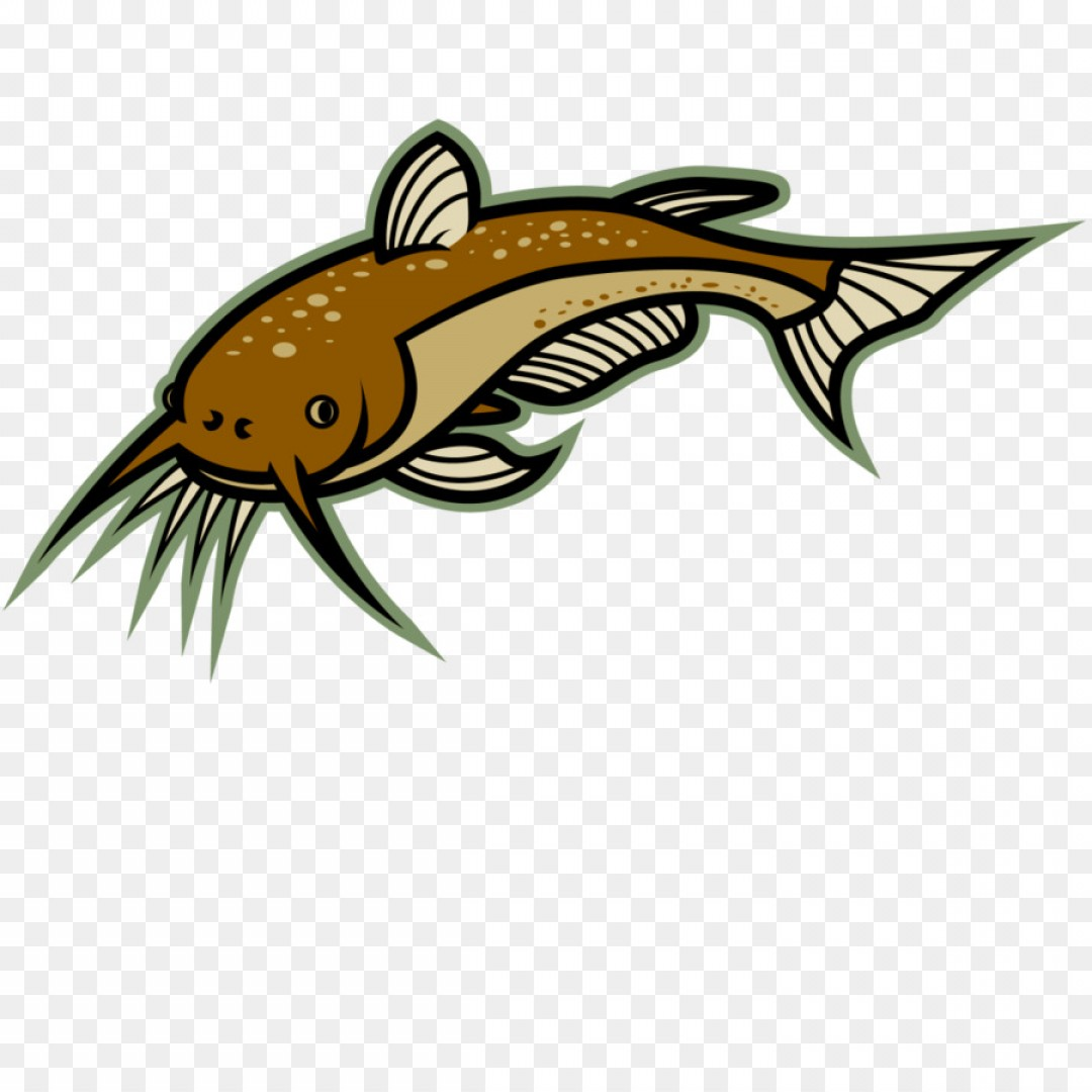 Catflish clipart transparent library Png Catfish Clip Art Catfish Cliparts | HandandBeak transparent library