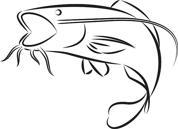 Catflish clipart jpg transparent Catfish Clipart | Free download best Catfish Clipart on ClipArtMag.com jpg transparent
