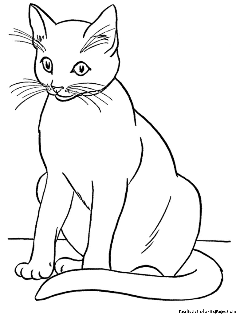 Clipart two kitties on pillow black and white clip art transparent library Cat black and white realistic coloring pages of cats clipart ... clip art transparent library