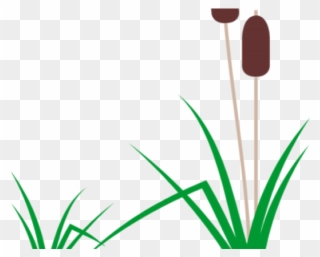 Free PNG Cattails Clip Art Download - PinClipart clipart free download